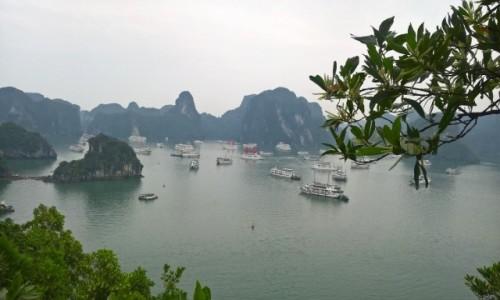 Zdjecie WIETNAM / Wietnam północny / Ha Long / Zatoka Ha Long