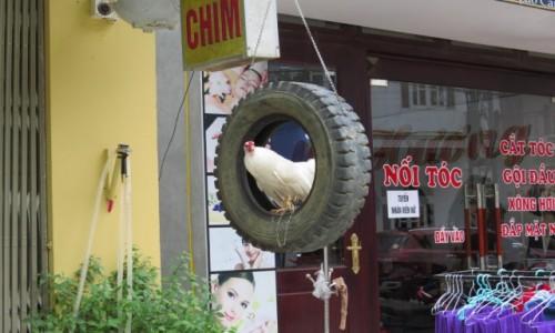 WIETNAM / Lao Cai / Sa Pa / Sa pa