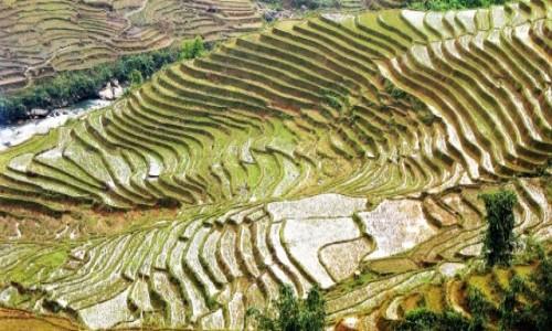 WIETNAM / Sapa / Ryżowe tarasy Hmongów / Mokre schodki
