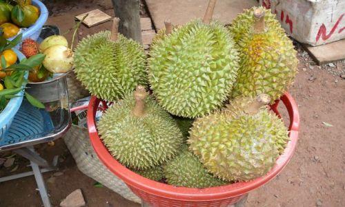 Zdjecie WIETNAM / Delta Mekongu / farma / Pyszne owoce