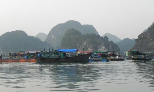 Zdjęcie WIETNAM / halog bay / wietnam / wietnam