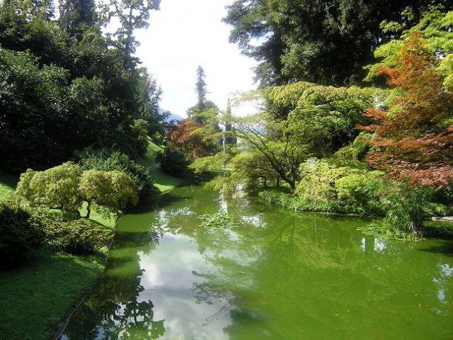 Zdj�cia: Bellagio, Ogrody Villa Melzi, W�OCHY