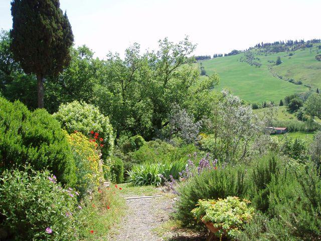 Zdjęcia: Pomarance, Toscana, krajobraz, WłOCHY