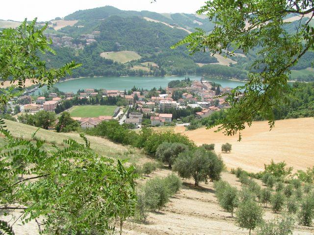 Zdj�cia: Oliwki, Marche, Marcetale, W�OCHY