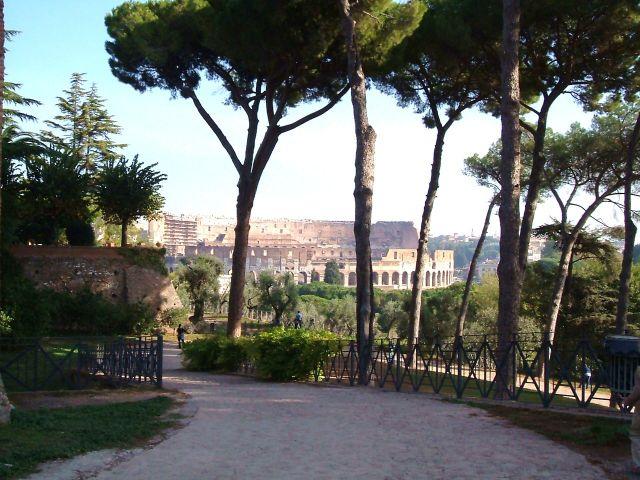 Zdjęcia: Rzym, Rzym, Rzym - widok na Koloseum z Palatynu, WłOCHY