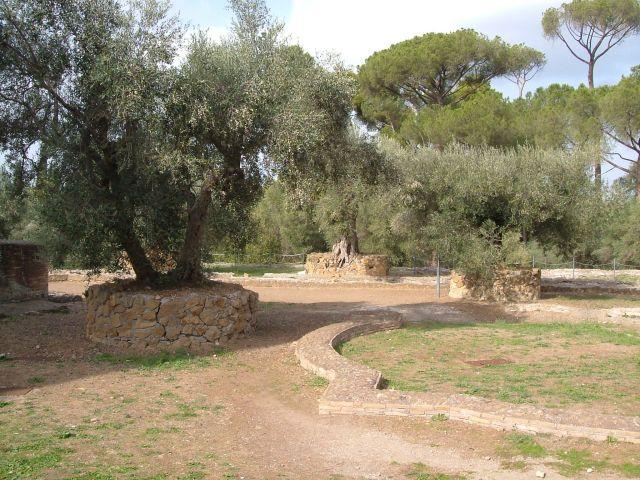Zdjęcia: Tivoli, okolice Rzymu, w willi Adriana , WłOCHY