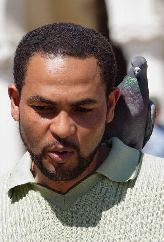 Zdjęcia: Wenecja, Mam gołębia i nie zawaham sie go użyć ;), WłOCHY
