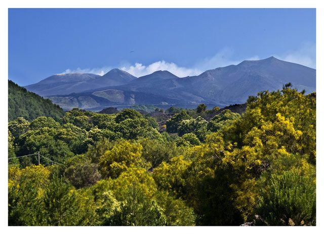 Zdjęcia: Sycylia_etna, Sycylia - Etna, WłOCHY