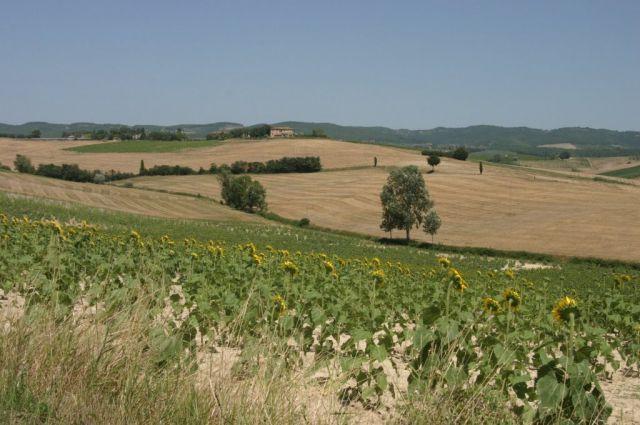 Zdjęcia: Toskania, Pod słońcem..., WłOCHY
