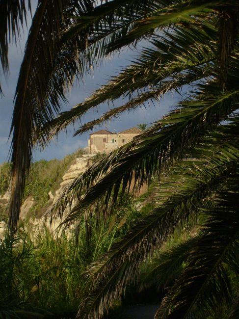 Zdj�cia: Pod palmami, Kalabria, Okiem przez palmy, W�OCHY