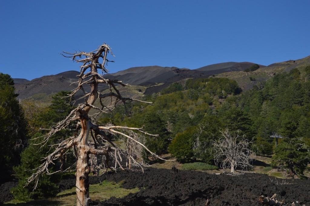 Zdjęcia: Etna, Sycylia, tyle nam zostało, WłOCHY