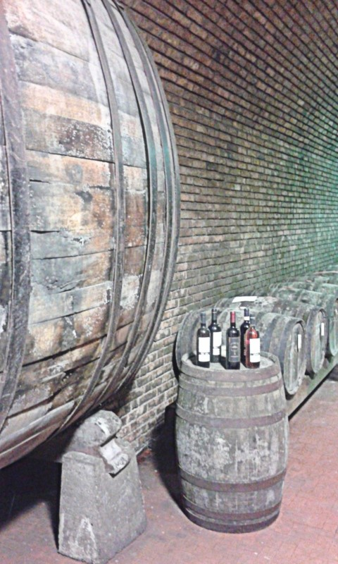 Zdjęcia: Casalbosco, Toskania, Wino, WłOCHY