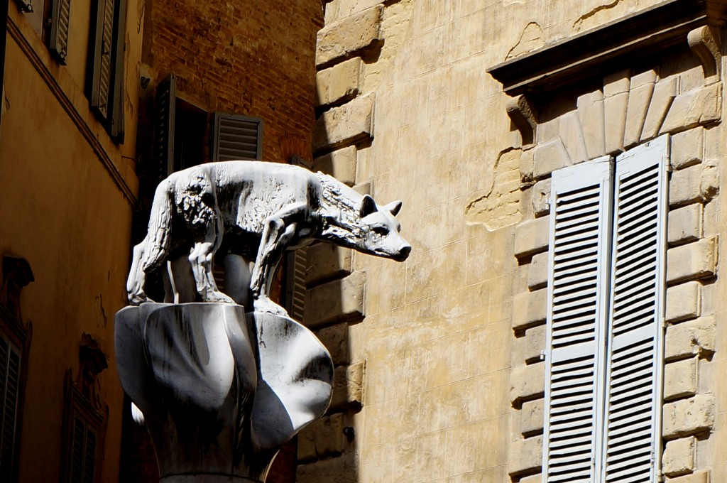 Zdjęcia: Siena, Toskania, Wilczyca, WłOCHY