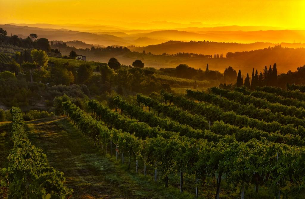 Zdjęcia: San Gimignano, Toskania, Poranek, WłOCHY
