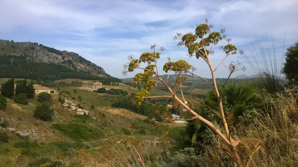 Zdjęcia: Segesta, Sycylia, landschaft z ruinami w tle, WłOCHY