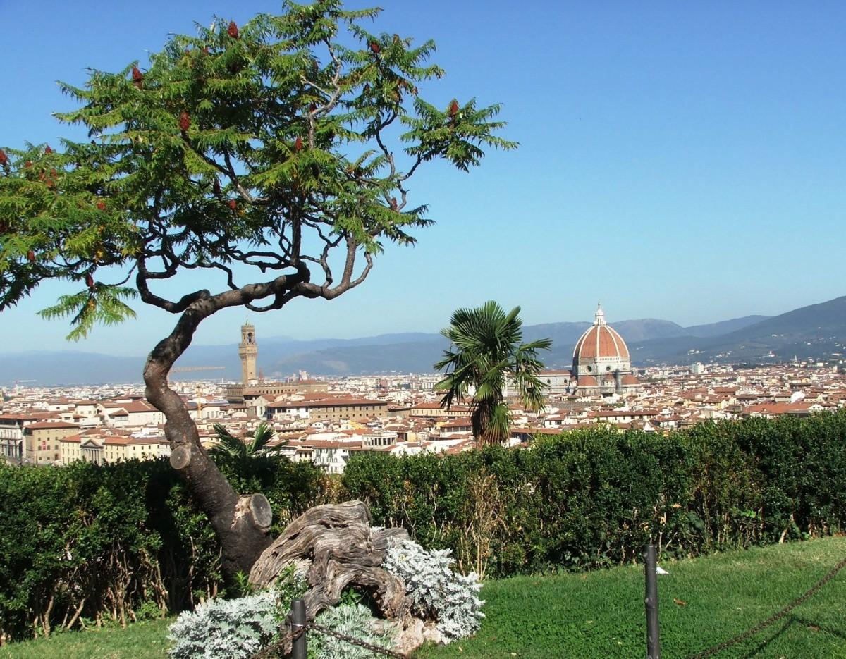 Zdjęcia: Florencja, Toskania , Dachy Florencji, WłOCHY