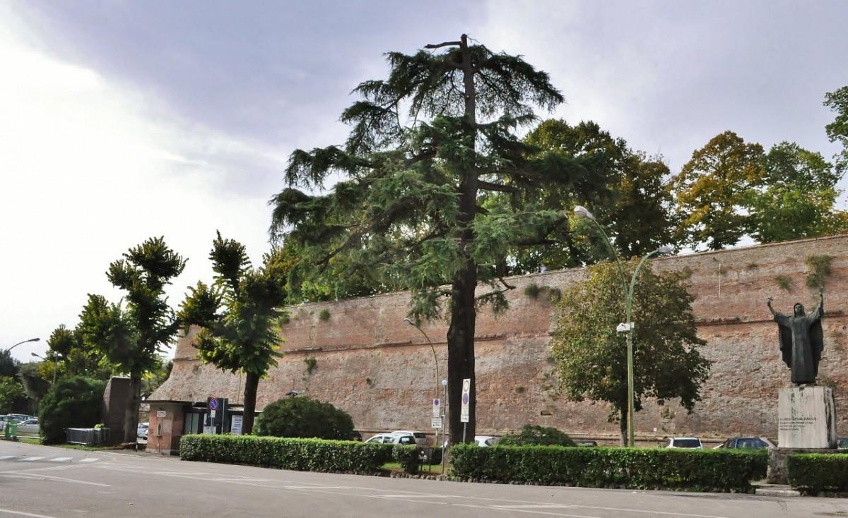 Zdjęcia: Siena, Toskania, Siena, forty, WłOCHY