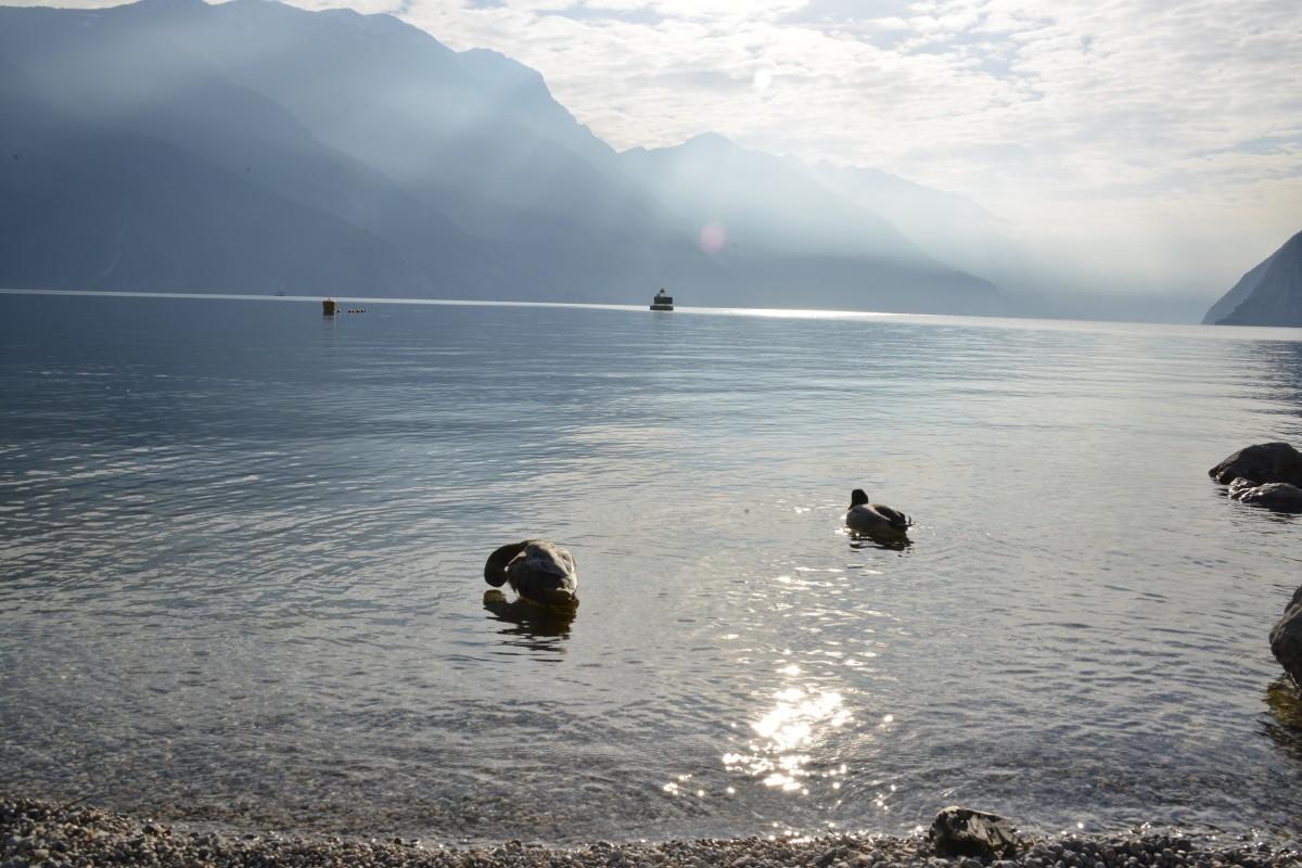 Zdjęcia: Jezioro Garda, Trentino, Jezioro Garda 3, WłOCHY
