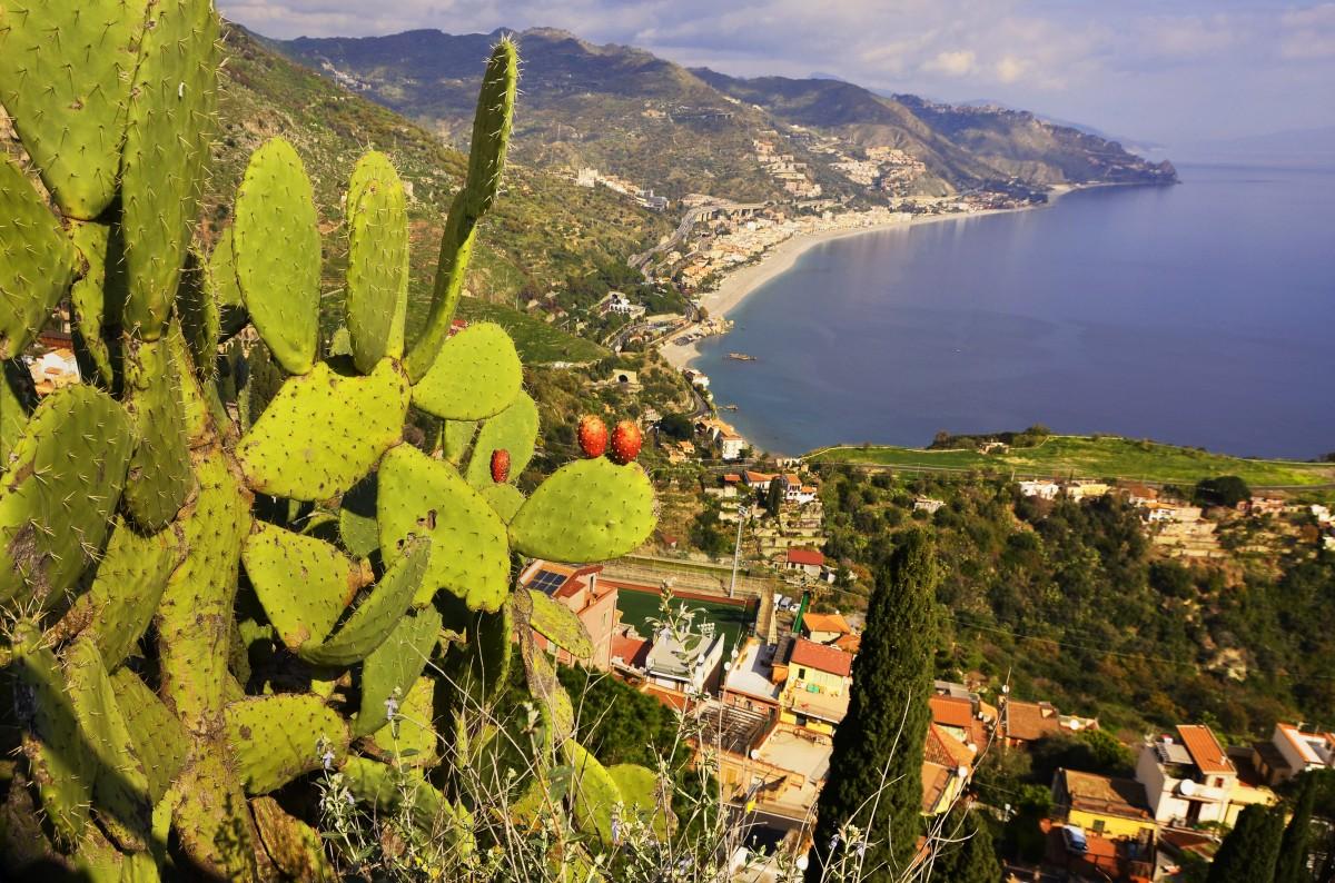 Zdjęcia: Taormina, Sycylia, Opuncja , WłOCHY
