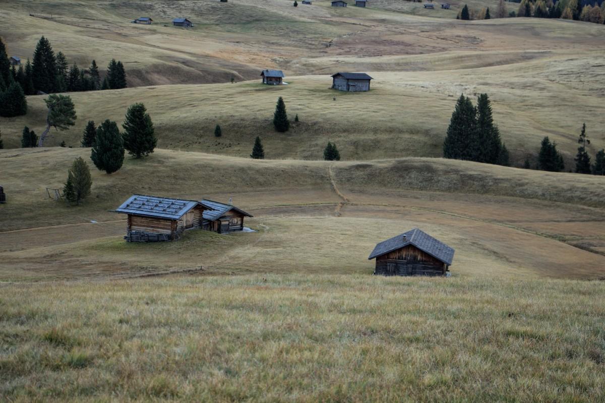 Zdjęcia: ., ., Alpe di Siusi, WłOCHY