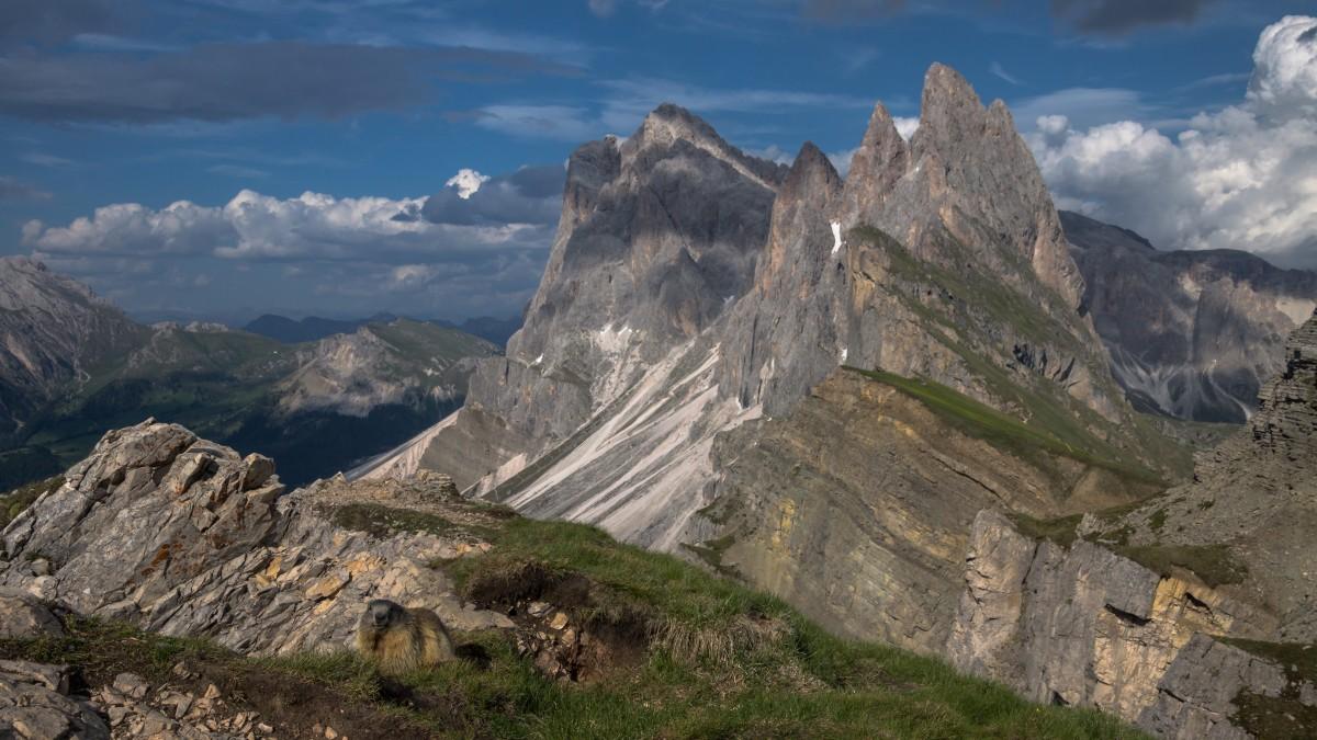 Zdjęcia: Seceda, Dolomity, Seceda, WłOCHY