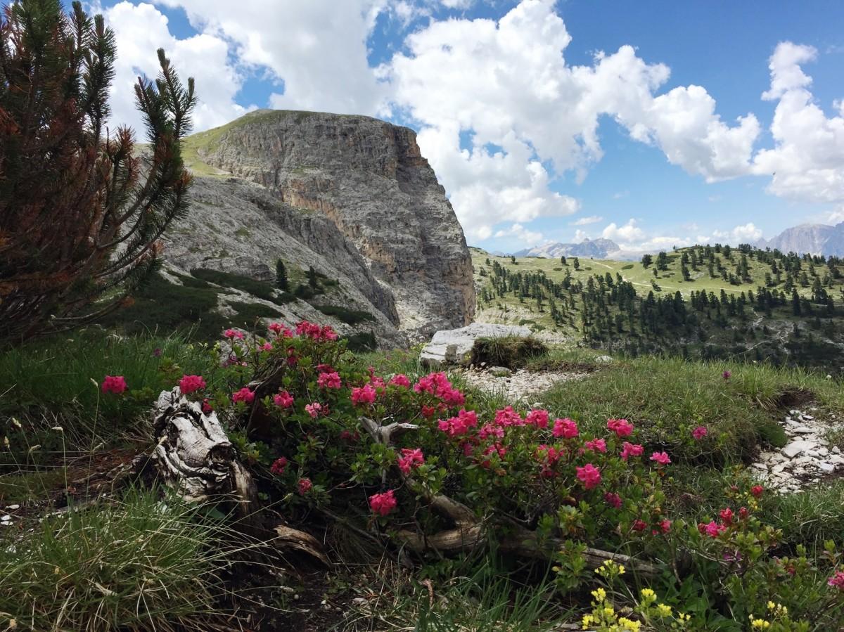 Zdjęcia: rejony Cortina d'Ampezzo, Górskie rejony, WłOCHY