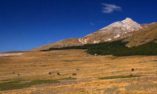 Zdjęcie WłOCHY / Gran Sasso dItalia / Fonte Vetica / Pastwiska Fonte Vetica z Monte Camicia w tle