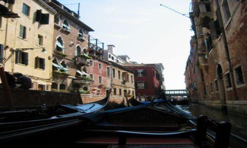 Zdjecie W�OCHY / - / Wenecja / Wenecja