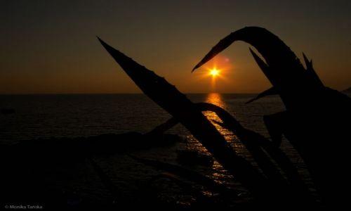 Zdjecie WłOCHY / - / Riomaggiore / Zachód słońca