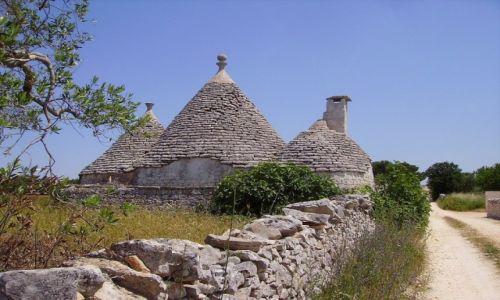 Zdjecie WłOCHY / Apulia / w drodze do Alberobello / wiejskie drogi Apulii