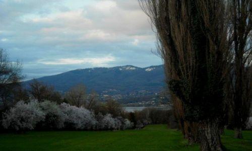 WłOCHY / Lombardia / Varese / Puszystość przyrody...