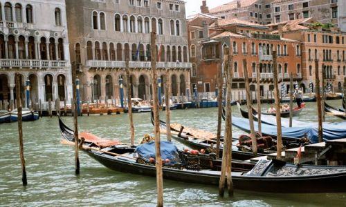 Zdjecie WłOCHY / brak / Wenecja - Canale Grande / Wenecja