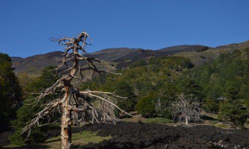 Zdjęcie WłOCHY / Sycylia / Etna / tyle nam zostało