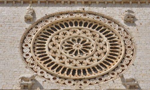 Zdjęcie WłOCHY / Umbria / Asyż / Asyż, bazylika św. Franciszka, rozeta