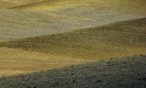 Zdjęcie WłOCHY / Toskania / Toskania / Toskania