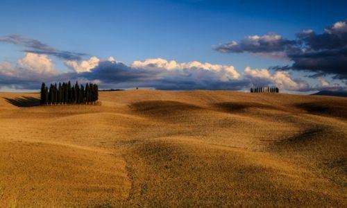 Zdjęcie WłOCHY / Toskania / Okolice Sieny  / Toskania