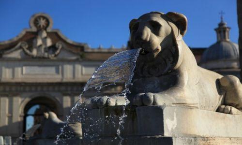 Zdjecie WłOCHY / Rzym / Plac Ludu / Lwy na Piazza del Popolo