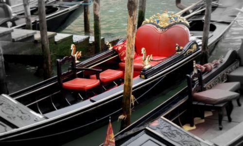 Zdjęcie WłOCHY / - / Wenecja / Karnawał w Wenecji