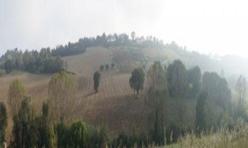 Zdjecie WłOCHY / Ancona / Potenza Picena / Italia Wzgórze