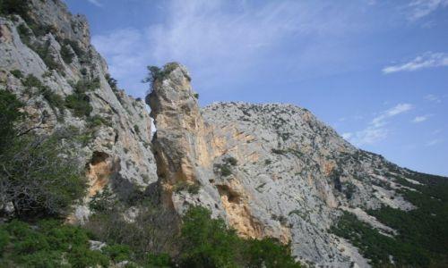 Zdj�cie W�OCHY / SARDYNIA / Supramonte/ Gorropu / w drodze do kanionu Gorropu