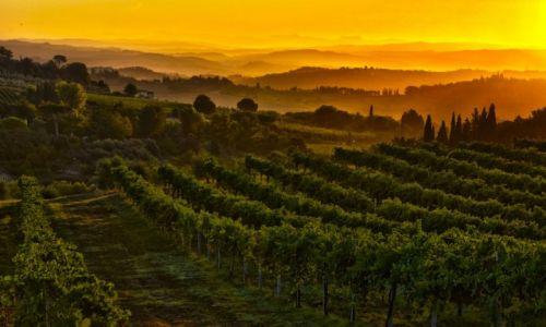 W�OCHY / Toskania / San Gimignano / Poranek