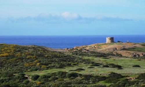 Zdjecie WłOCHY / Sardynia / Zachodnia część Sardynii / Wybrzeżem z Bosy do Alghero