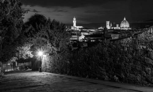 Zdjecie WłOCHY / Toskania / Florencja  / na zboczu