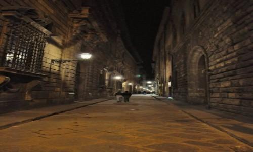 Zdjecie WłOCHY / Toskania / Florencja / Florencja,klima