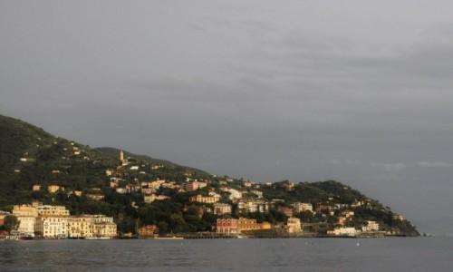 Zdjęcie WłOCHY / Liguria / Rapallo / Rapallo, panorama