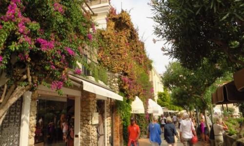 Zdjęcie WłOCHY / Kampania / Capri / uliczka w miasteczku Capri