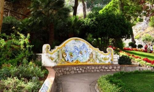 Zdjęcie WłOCHY / Kampania / Capri / park miejski