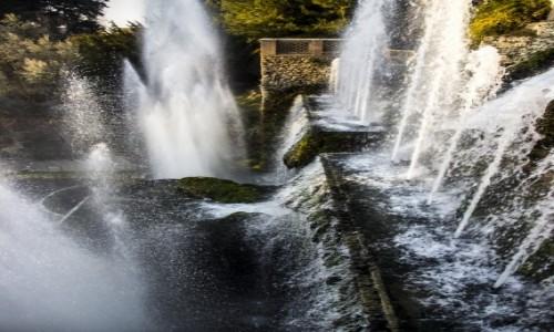 Zdjecie WłOCHY / Lazio / Tivoli / fontanny w Villa d'Este