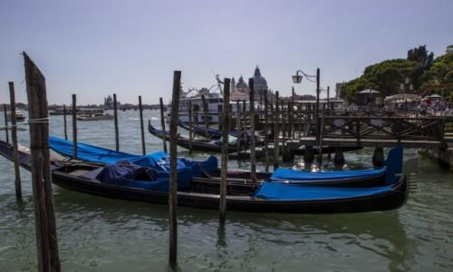 Zdjęcie WłOCHY / - / Wenecja / gondole