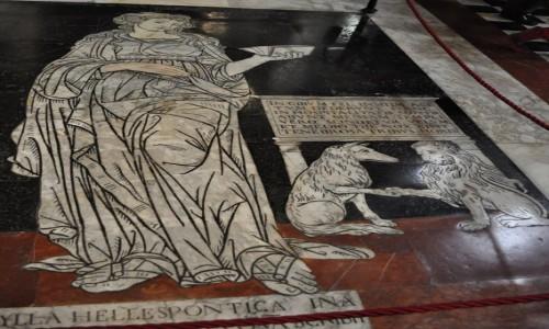 Zdjęcie WłOCHY / Toskania / Siena / Siena, katedra, podłoga